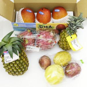 2_20170707_fruitofishigaki_sdim4292